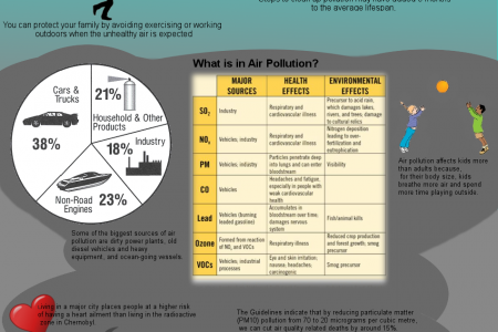Urban Air Pollution Infographic