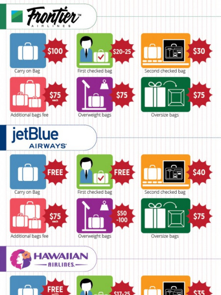 U.S. Airline Baggage Fee Infographic