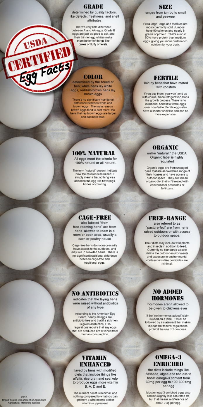 USDA Certified Egg Facts