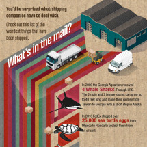 uShip - What's in the Mail? Infographic