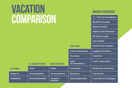 Vacation Comparison Chart Infographic
