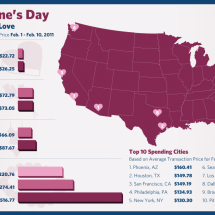 Valentine's Day 2011: How Much You Spent Infographic