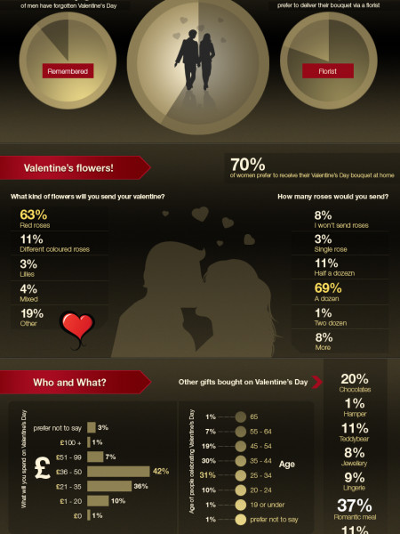 Valentine's Day Survey Infographic