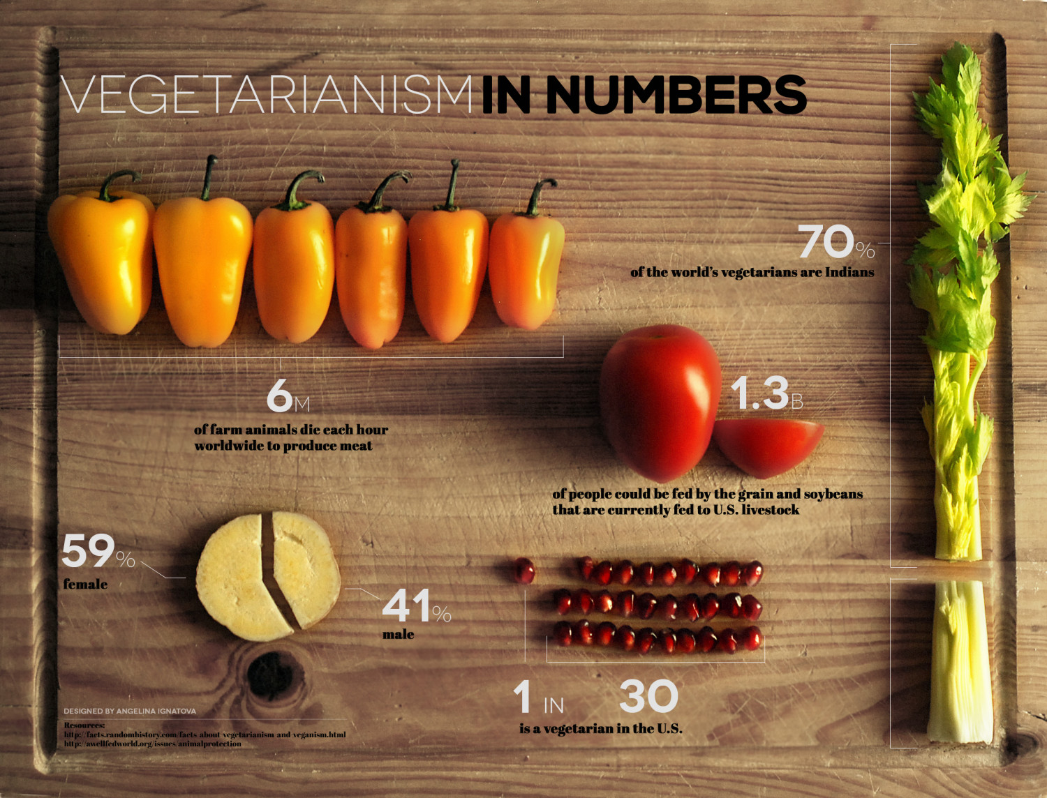 Hand made infographic on Vegetarianism, designed by Angelina