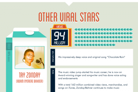 Viral Video Stars, Where Are They Now? Infographic