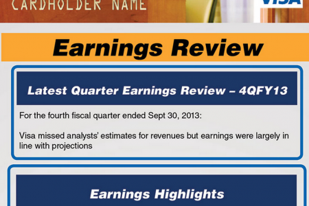 Visa Earnings Review Infographic