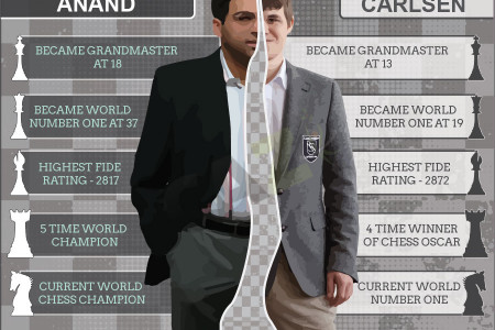 VISHY vs MAGNUS Infographic