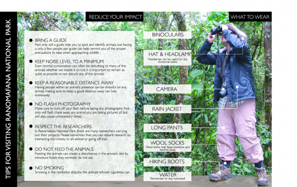 Visitor&#039;s Guide to Ranomafana National Park Infographic