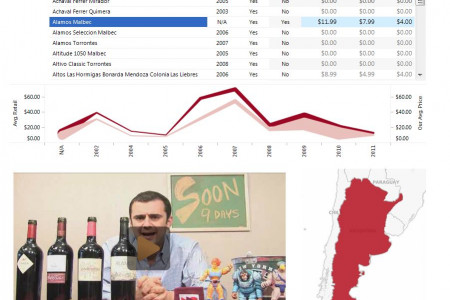 Visual Analytic Storefront of Gary Vaynerchuk's Wine Library Infographic