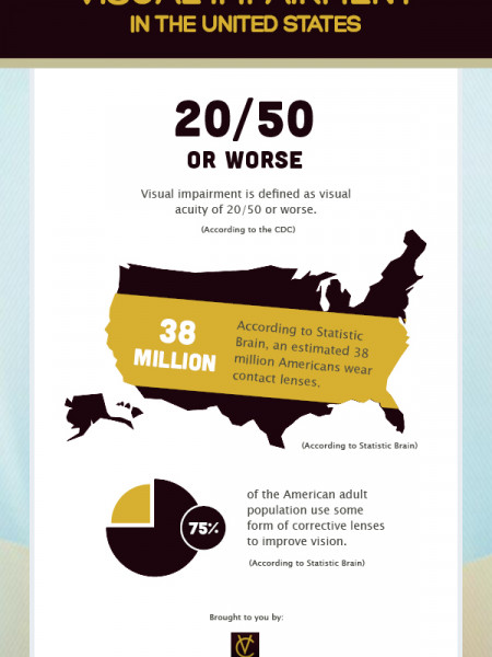 Visual Impairment in the United States Infographic
