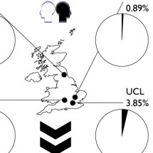 Visualising Demographics at UK Universities Infographic