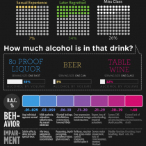 Visualizing Alcohol Use Infographic