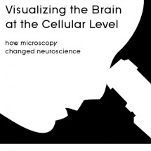 Visualizing the Brain at the Cellular Level: How Microscopy Changed Neuroscience Infographic