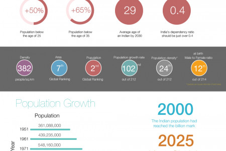 Vital Stats of India - Demographic Infographic Infographic