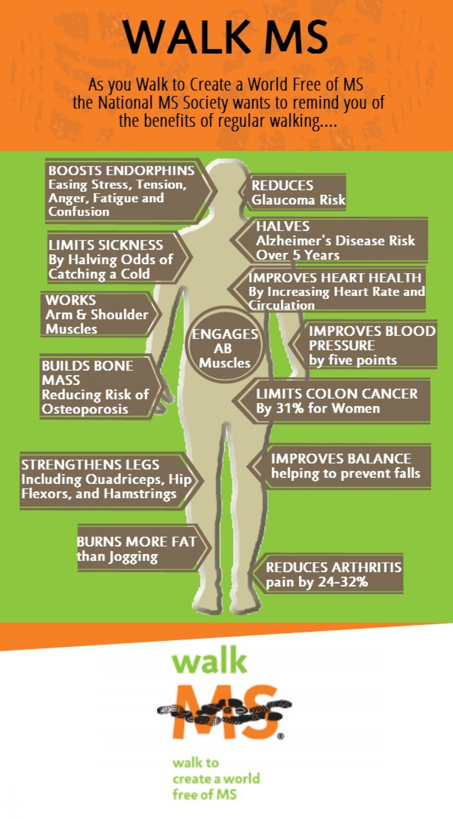 Walk MS Infographic Infographic