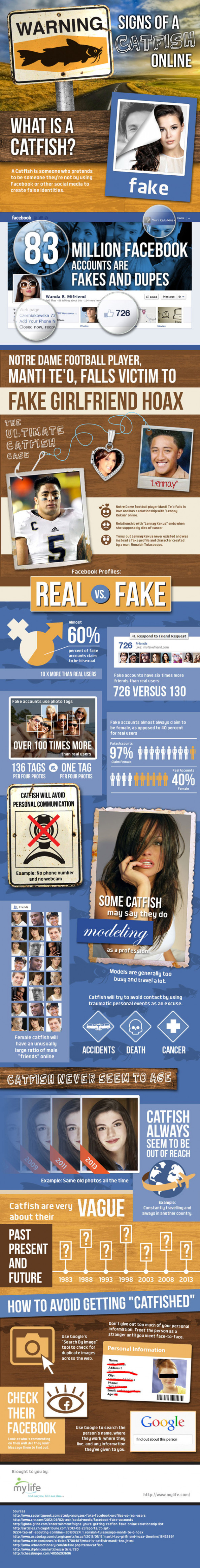 Warning Sign of a Catfish Online Infographic