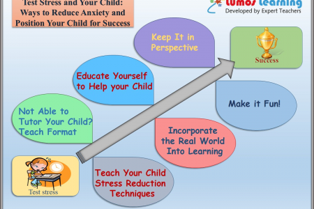 Ways to Reduce Standardized Testing Stress and Anxiety and Position Your Child for Success Infographic