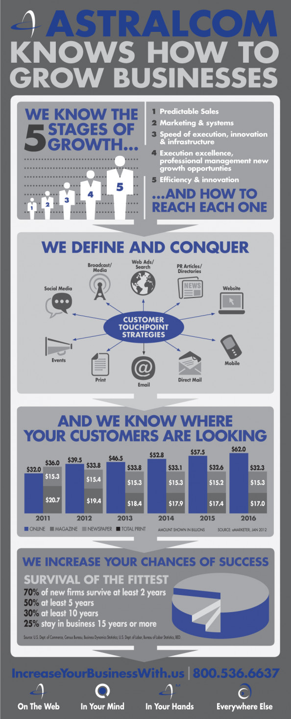 We Grow Businesses Infographic