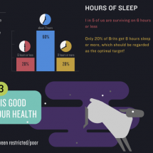 We Love Sleep Infographic