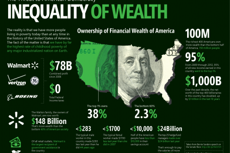 Inequality of Wealth Infographic