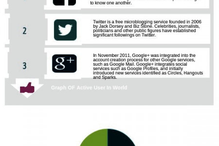 Web Analytics and Social Platforms  Infographic