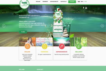 Webdesign for fruit drink Infographic