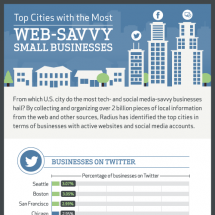 Web-savvy Small Businesses Infographic
