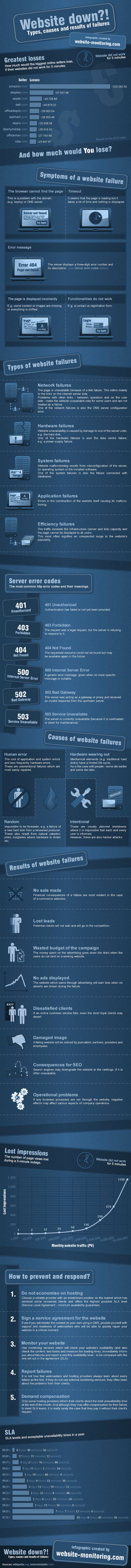 Website Down?! Infographic