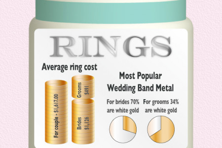 Wedding Budget Breakdown Infographic