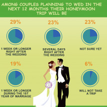 Wedding honeymoon planning Infographic