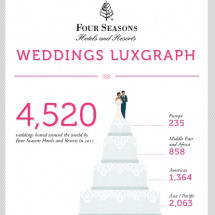 Weddings LuxGraph Infographic