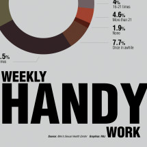 weekly handy work Infographic