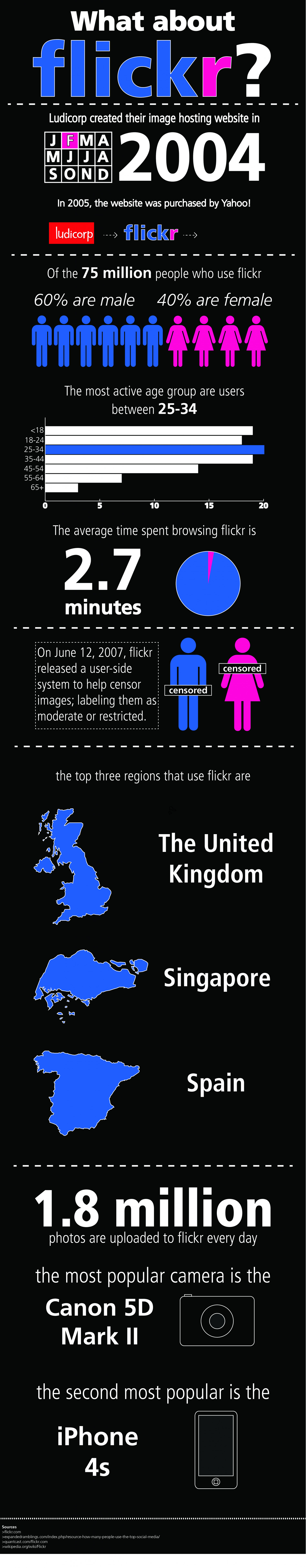 What about flickr? Infographic