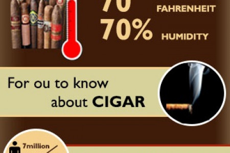 What About Humidor? Infographic