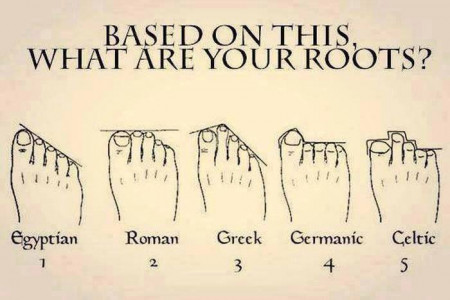 What are your roots? Infographic