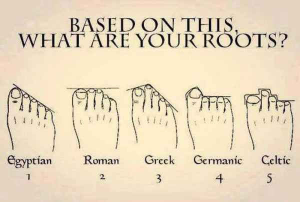 What are your roots?