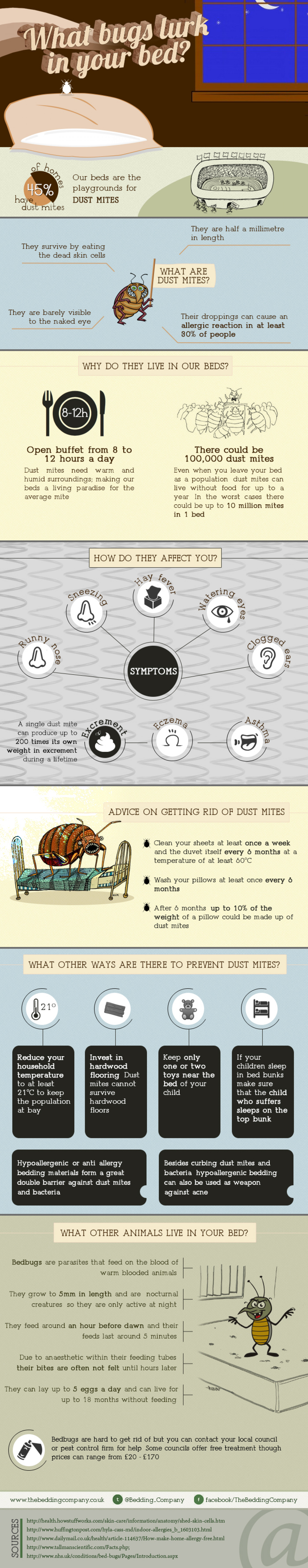 What bugs lurk in your bedding? Infographic