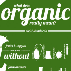 what does organic really mean what does organic really mean 7 common food terms defined 250x250