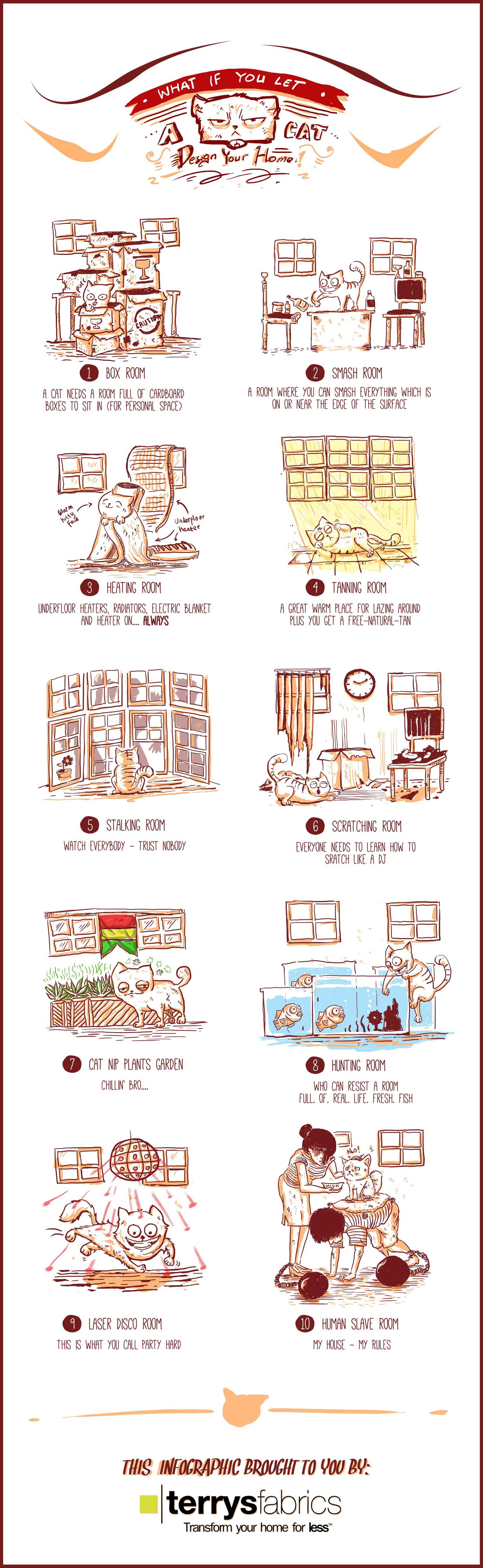 Infographic: What If You Let A Cat Design Your Home