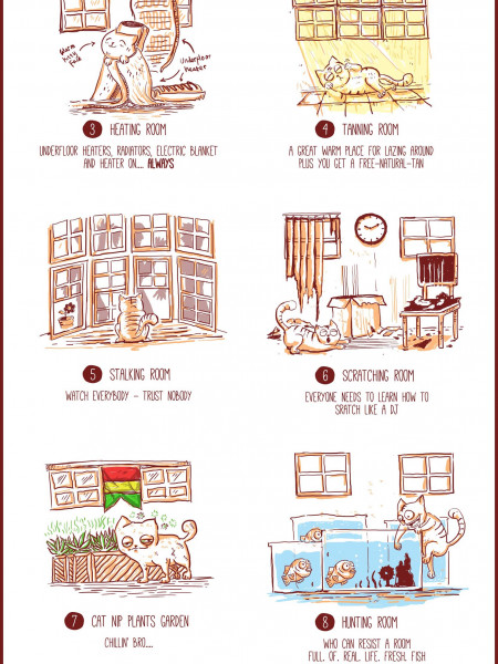 What If You Let A Cat Design Your Home? Infographic