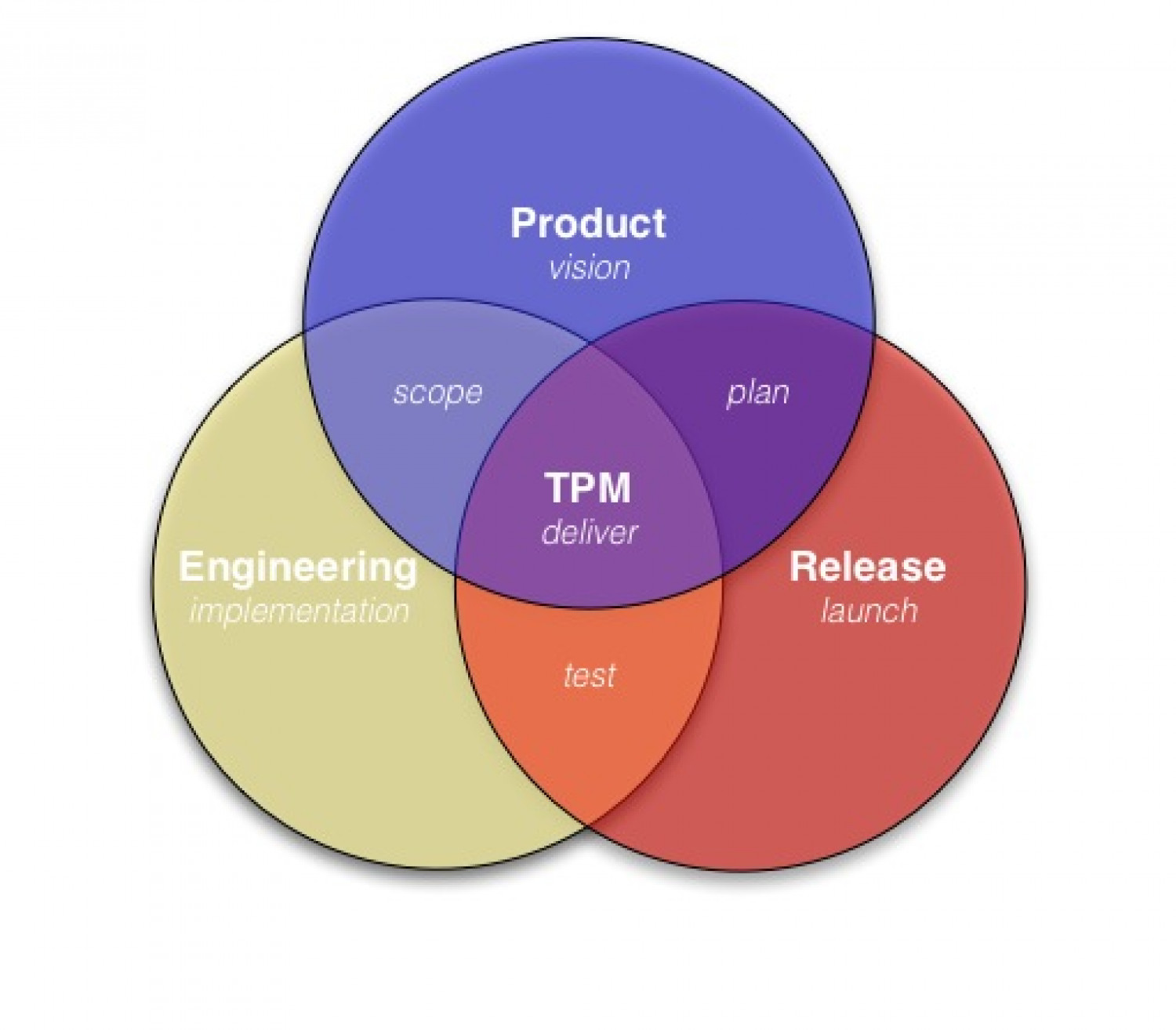 What is a Technical Program Manager (TPM)? Infographic