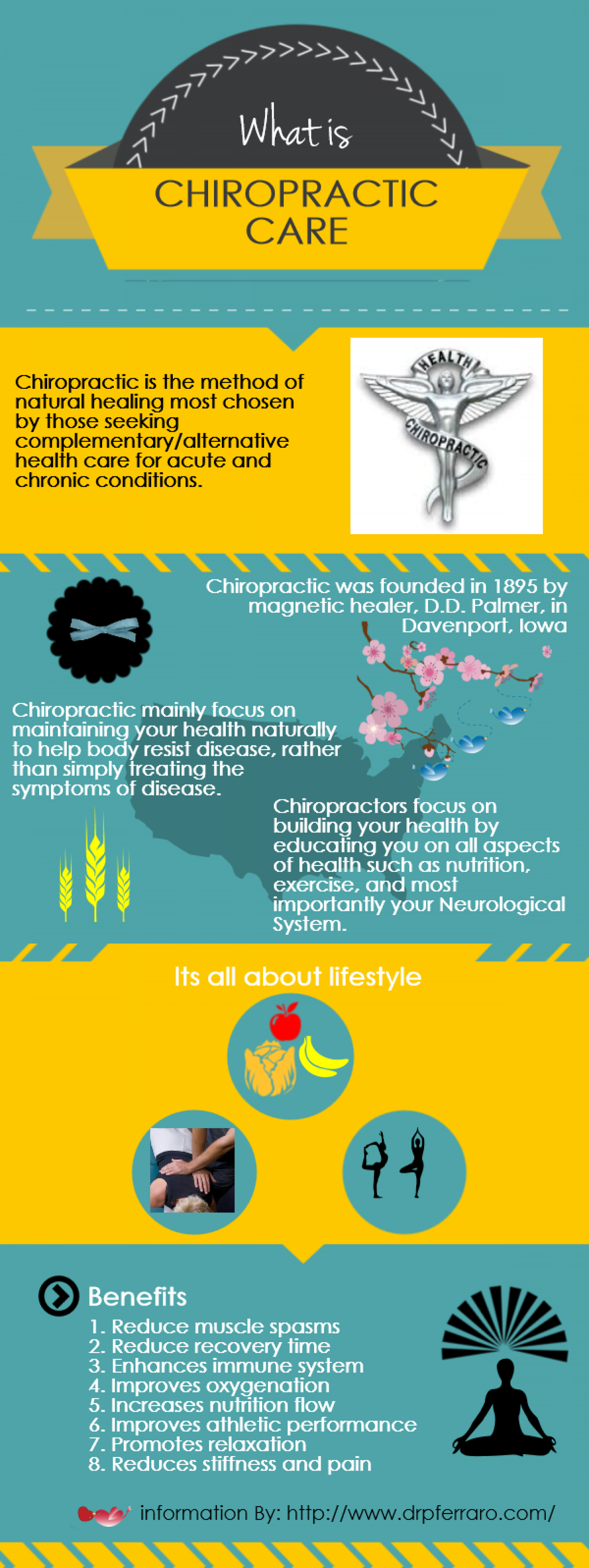 What is Chiropractic Care Infographic