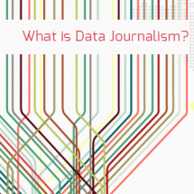 What is Data Journalism Infographic