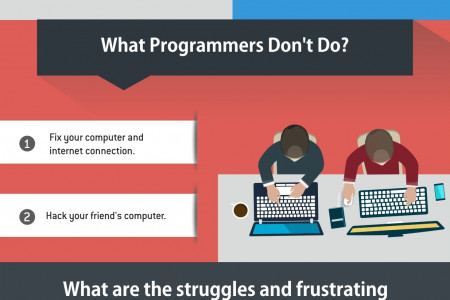 What Is Programming And What Do Programmers Do? Infographic