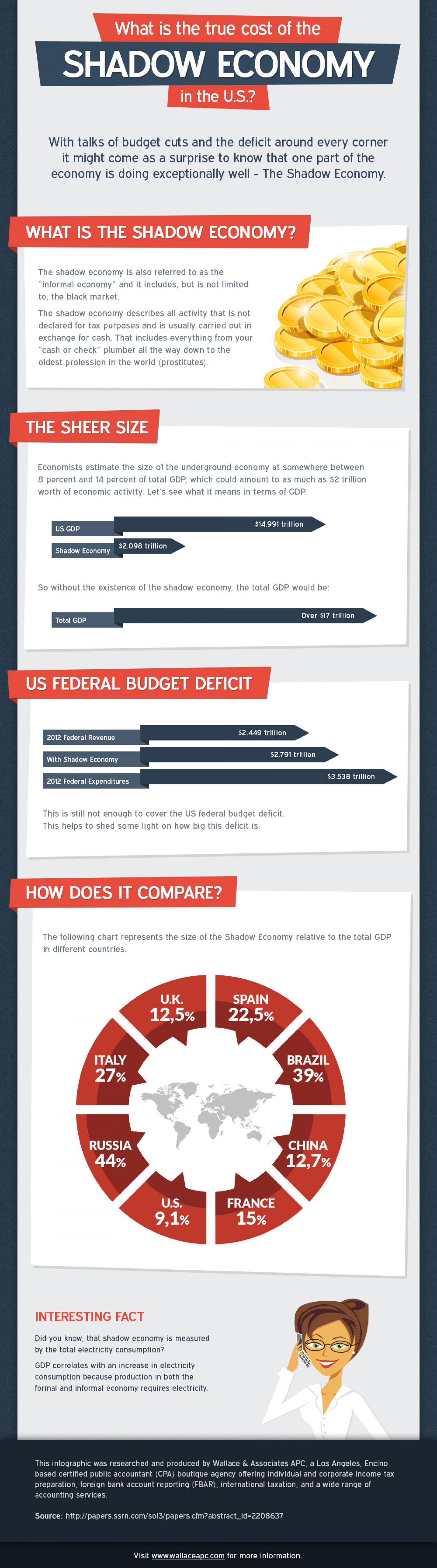 What is the true cost of the shadow economy in the U.S.? Infographic