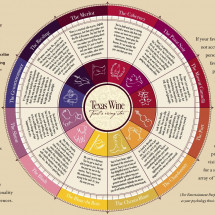 What is Your Wine  Infographic