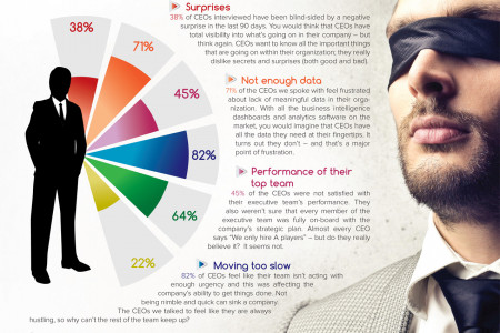 What Keeps CEOs Up at Night? Six Facts That Will Surprise You Infographic