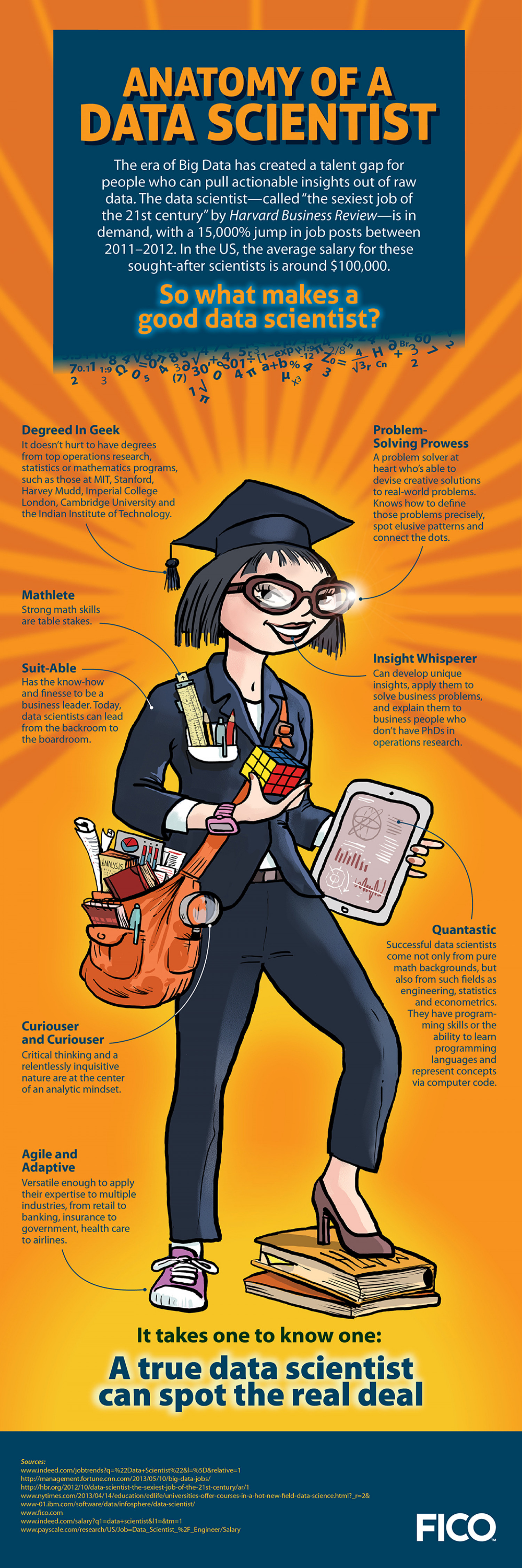 What Makes A Good Data Scientist? Infographic