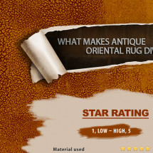 What makes Antique Oriental Rug Diverse Infographic