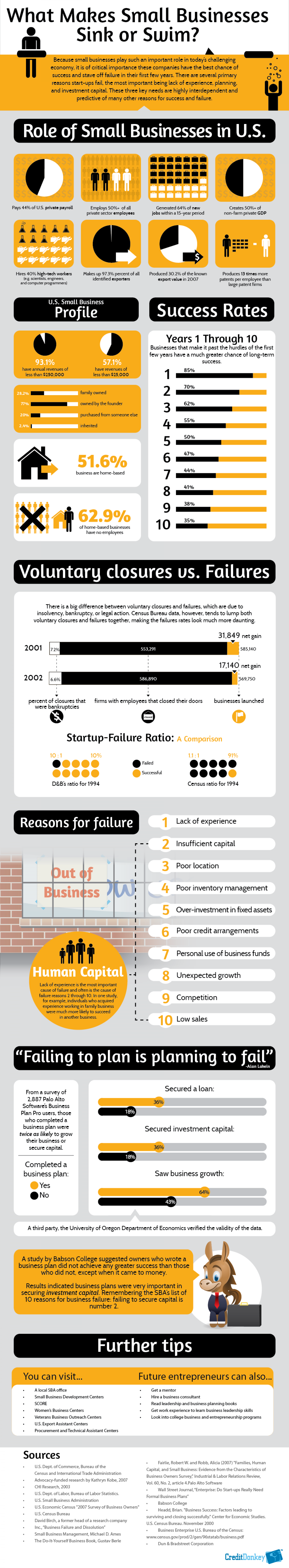 What Makes Small Businesses Sink or Swim? Infographic